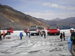 On the Columbia icefield